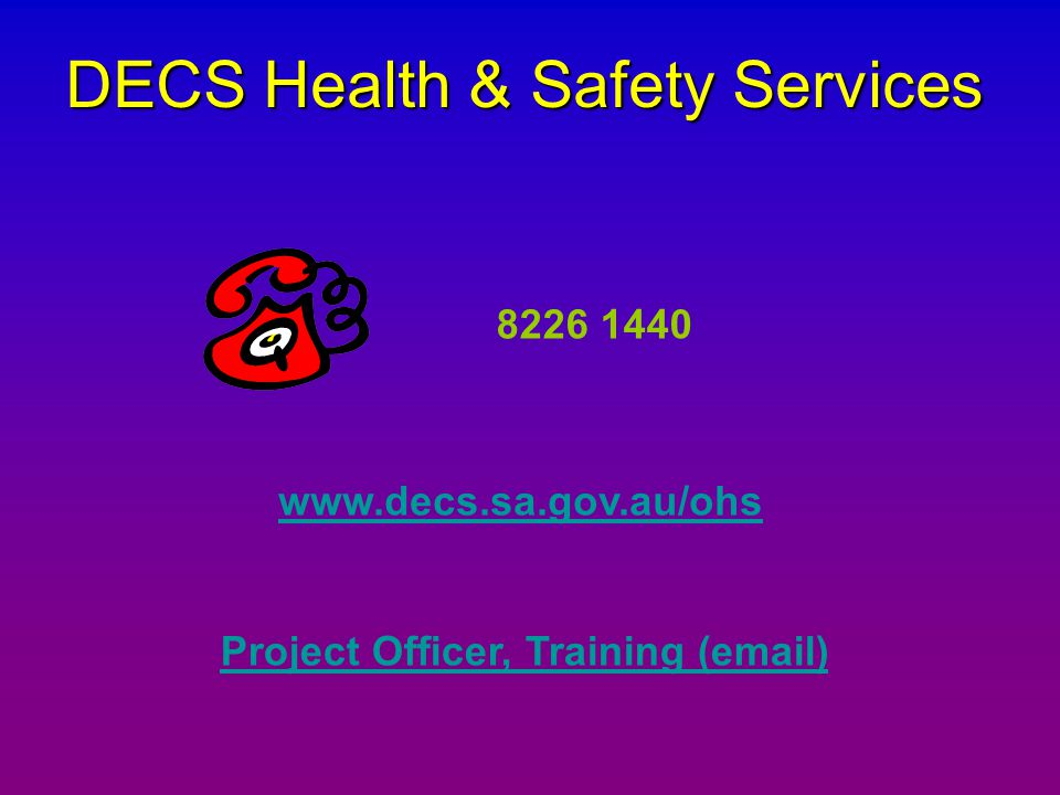Project Officer, Training ( )