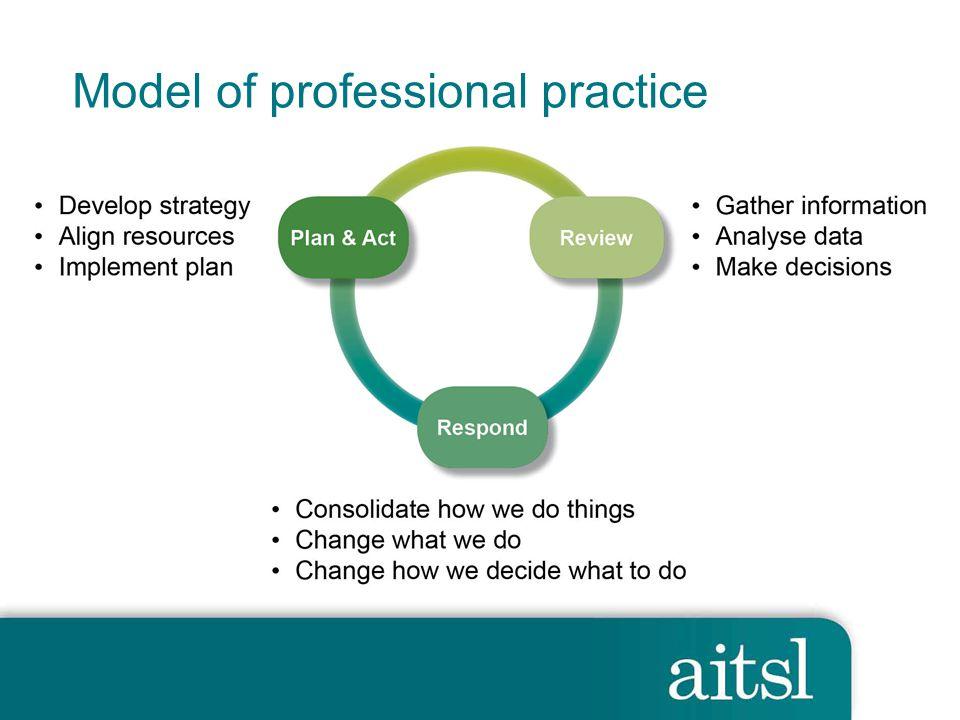 Model of professional practice