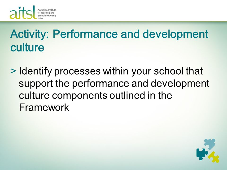 Activity: Performance and development culture