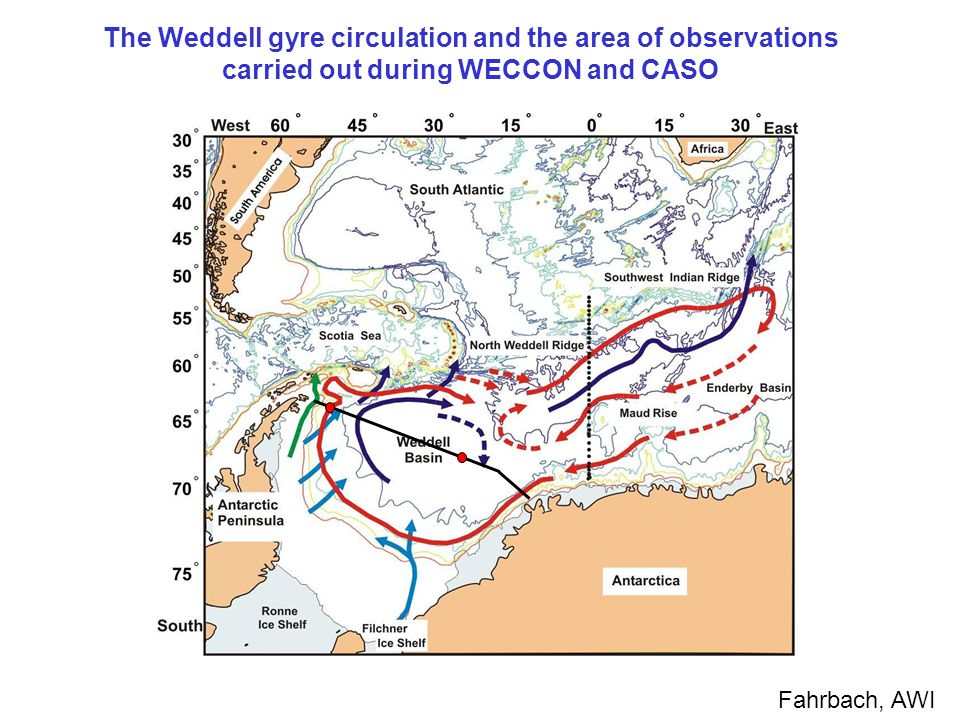The Weddell gyre circulation and the area of observations carried out during WECCON and CASO