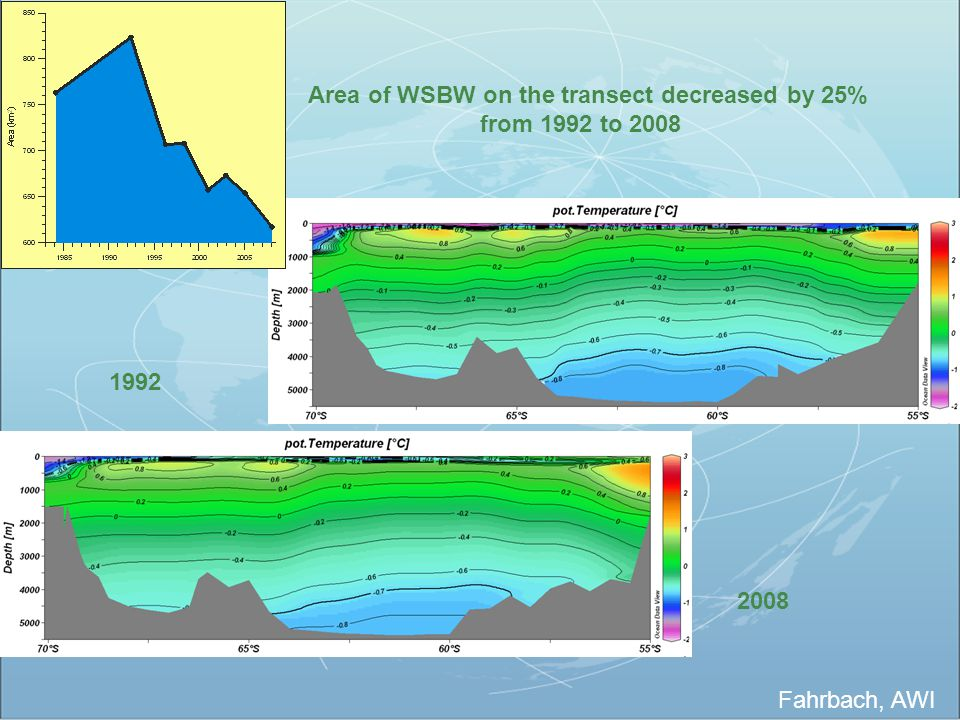 Area of WSBW on the transect decreased by 25%
