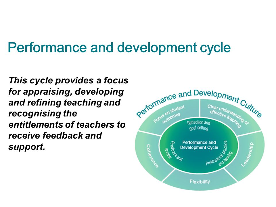 Performance and development cycle