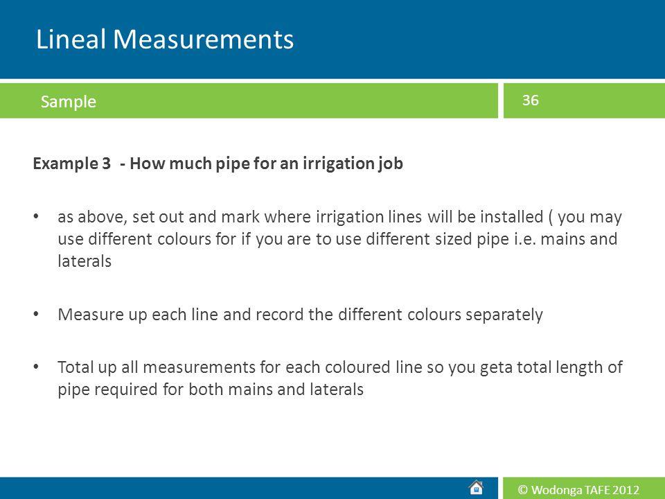 Lineal Measurements Sample