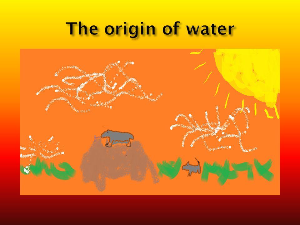 The origin of water