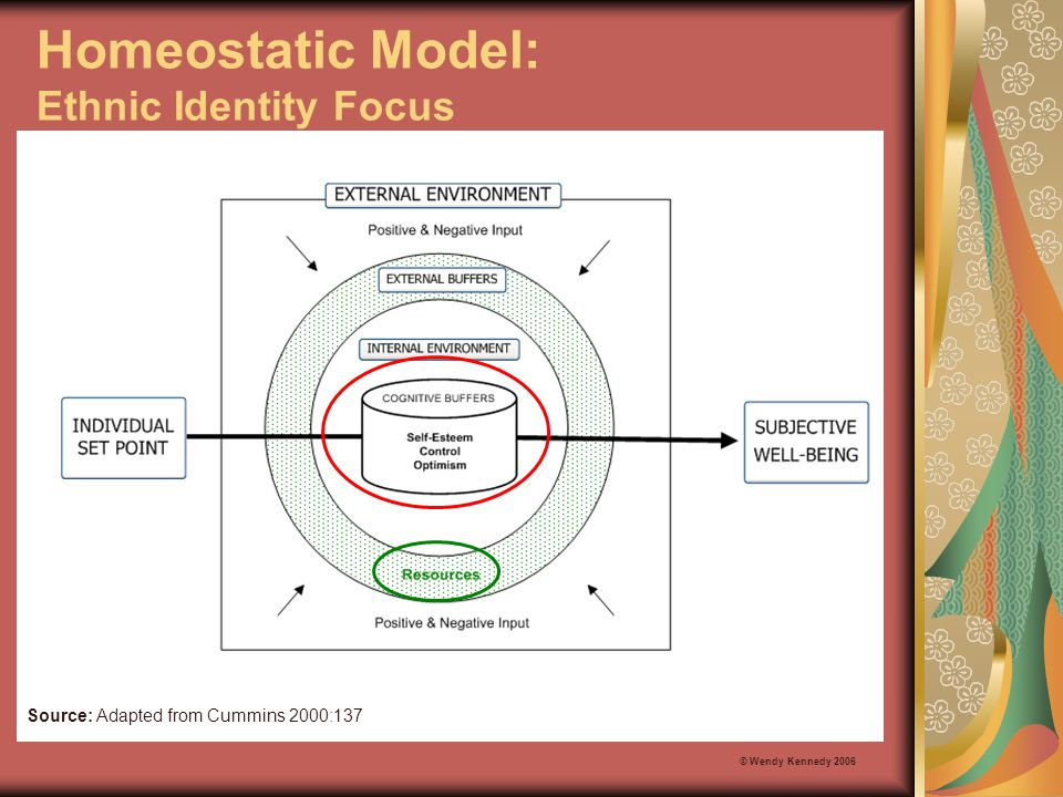 Homeostatic Model: Ethnic Identity Focus
