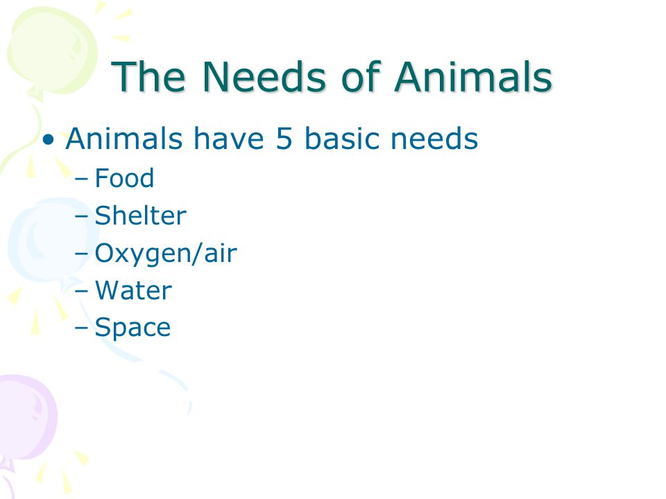 The Needs of Animals Animals have 5 basic needs Food Shelter