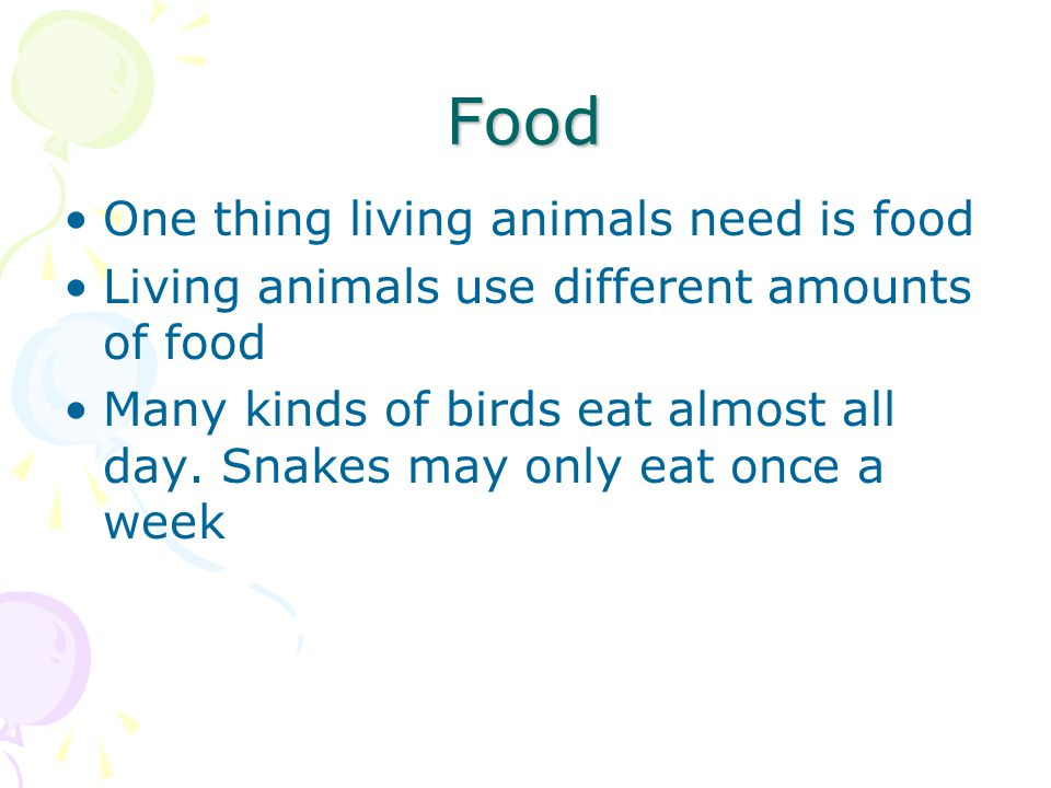 Food One thing living animals need is food