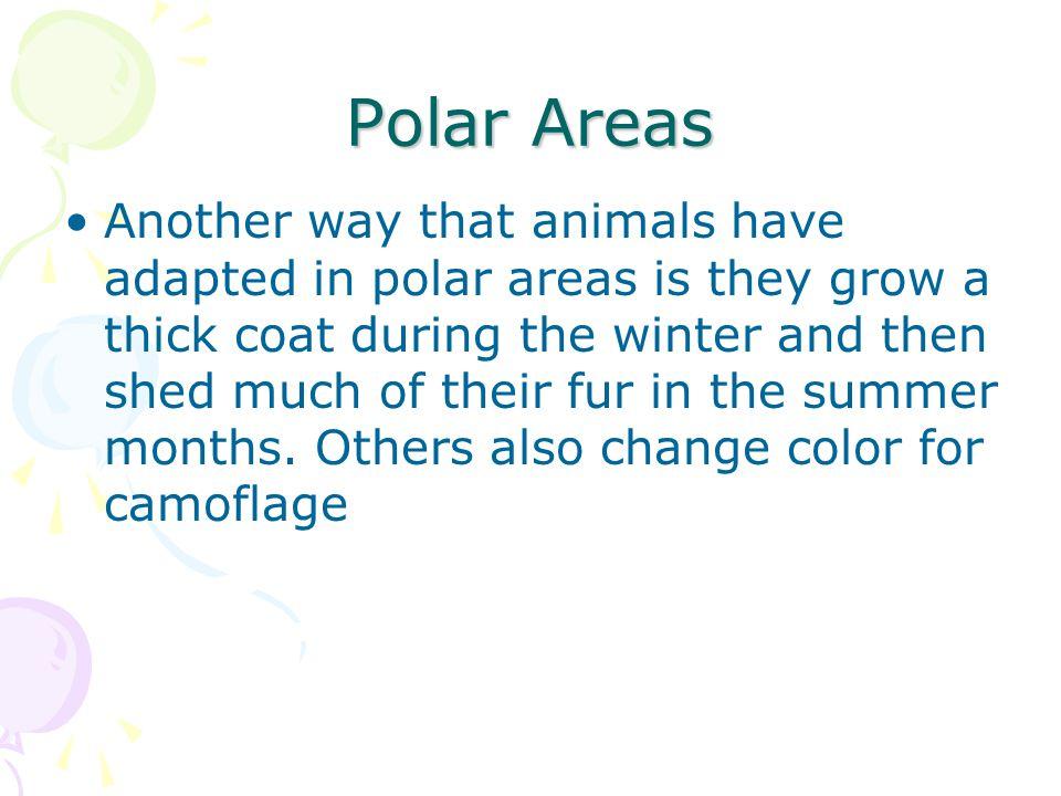 Polar Areas