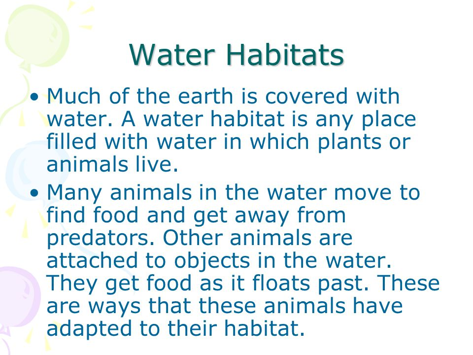 Water Habitats Much of the earth is covered with water. A water habitat is any place filled with water in which plants or animals live.