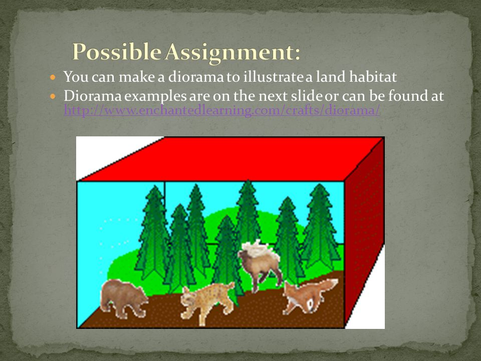 Possible Assignment: You can make a diorama to illustrate a land habitat.