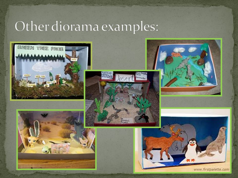 Other diorama examples: