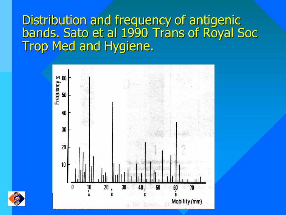 Distribution and frequency of antigenic bands