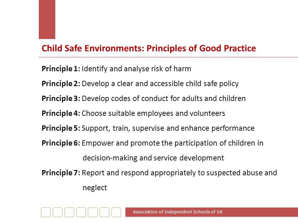 Child Safe Environments: Principles of Good Practice