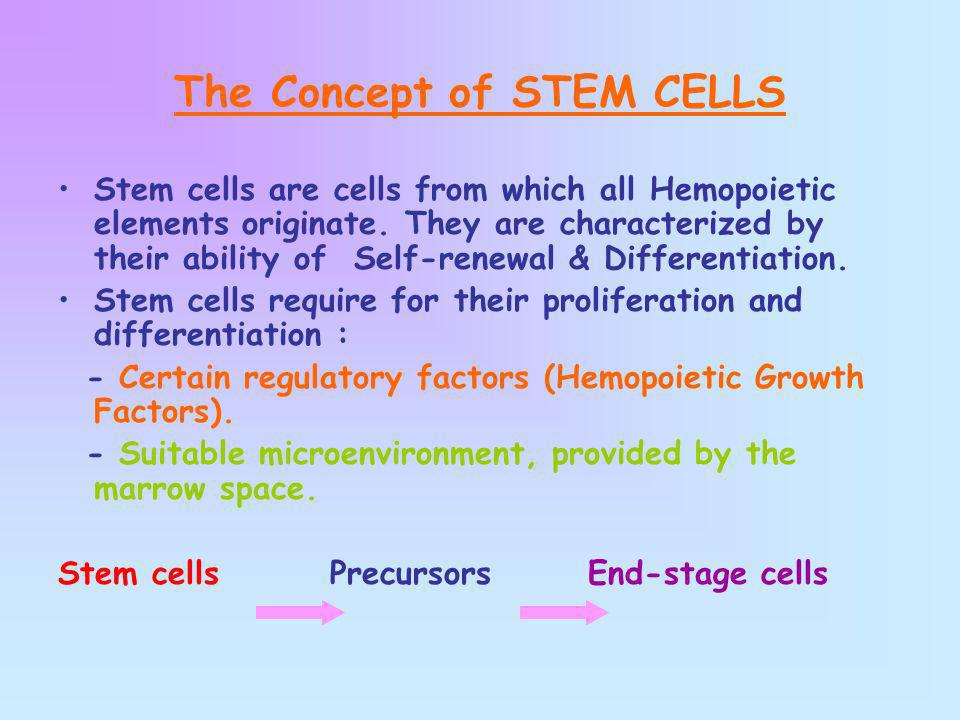 The Concept of STEM CELLS