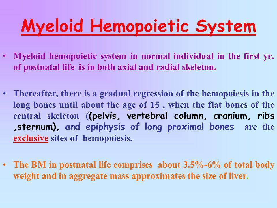 Myeloid Hemopoietic System