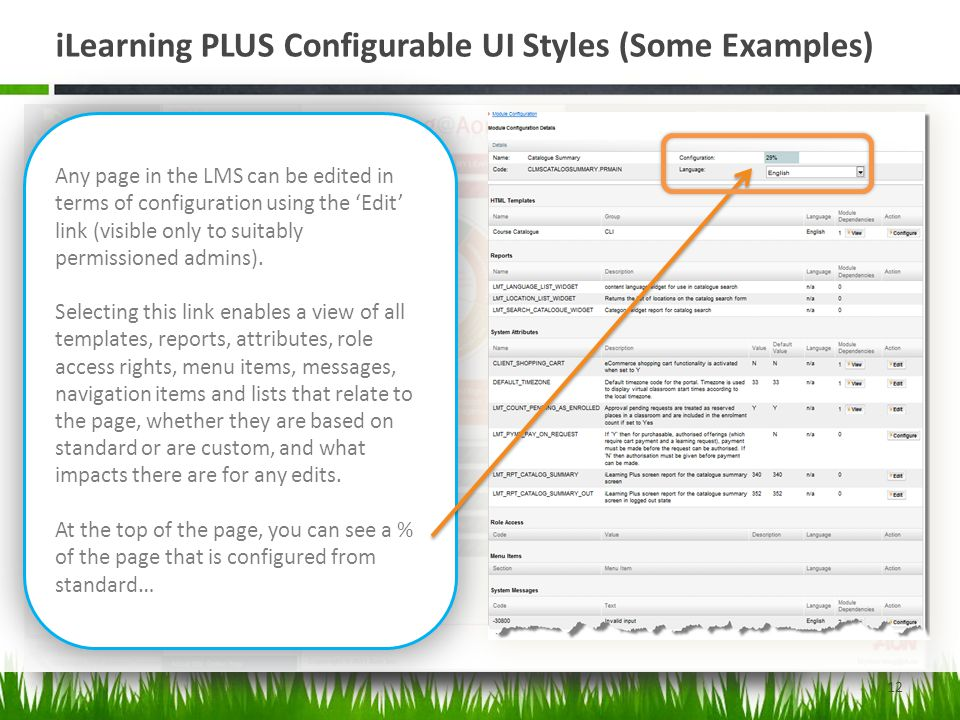 iLearning PLUS Configurable UI Styles (Some Examples)