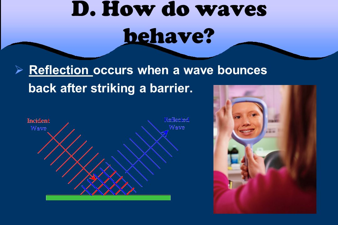 D. How do waves behave Reflection occurs when a wave bounces