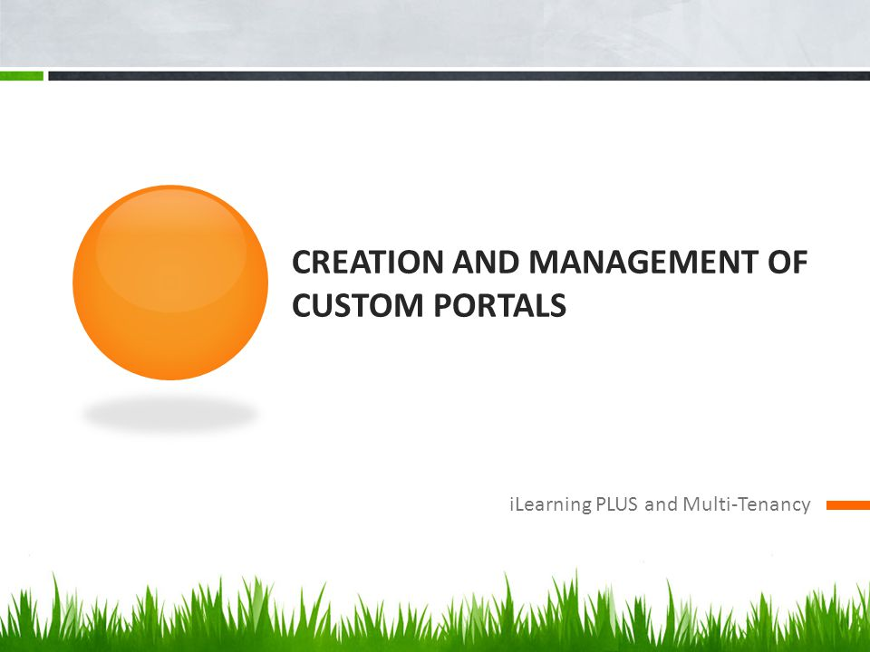 Creation and management of custom portals
