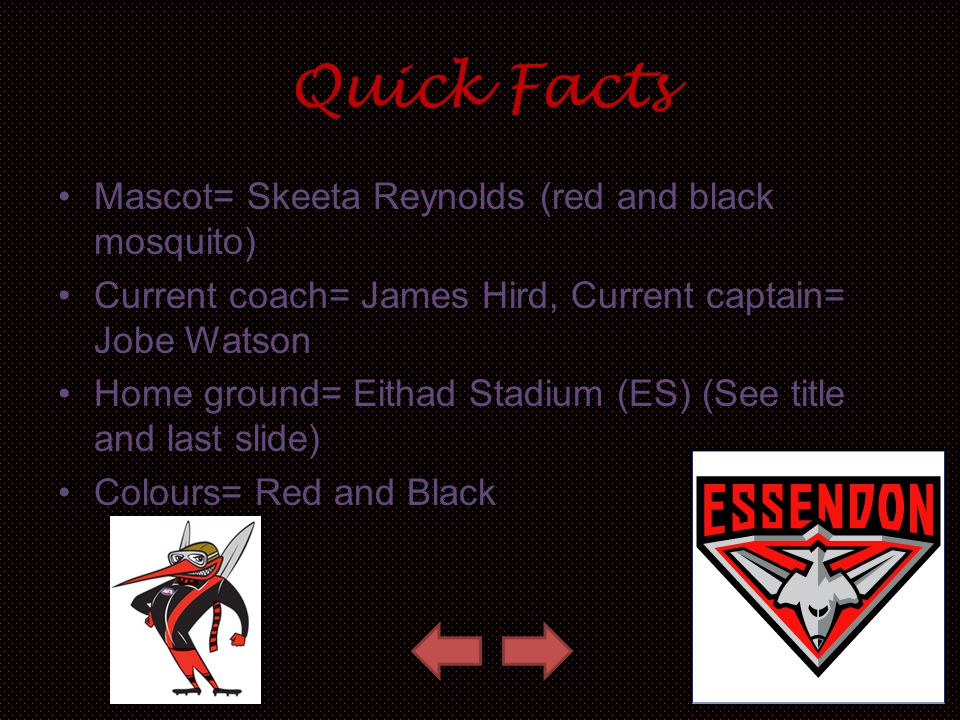 Quick Facts Mascot= Skeeta Reynolds (red and black mosquito)
