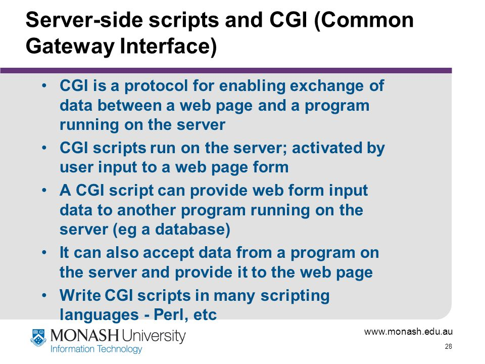 Server-side scripts and CGI (Common Gateway Interface)
