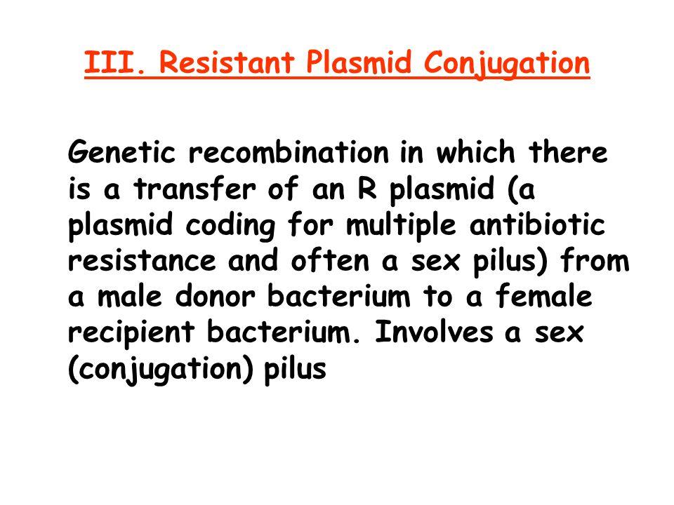 III. Resistant Plasmid Conjugation