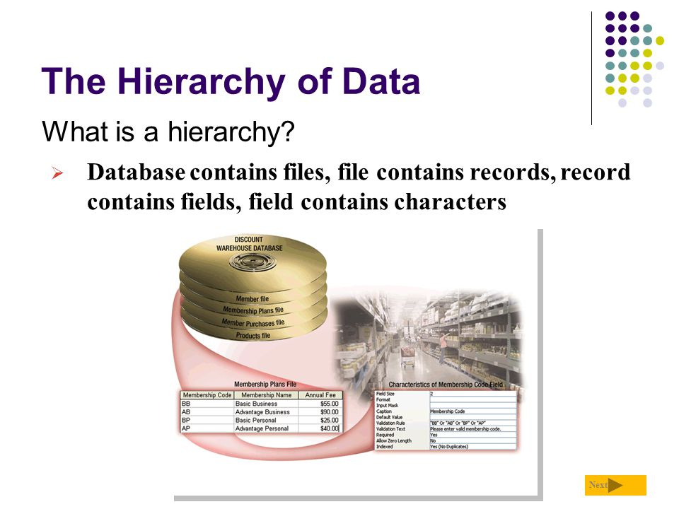 The Hierarchy of Data What is a hierarchy