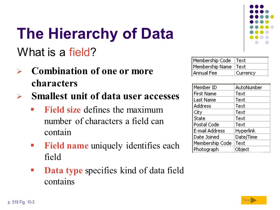 The Hierarchy of Data What is a field
