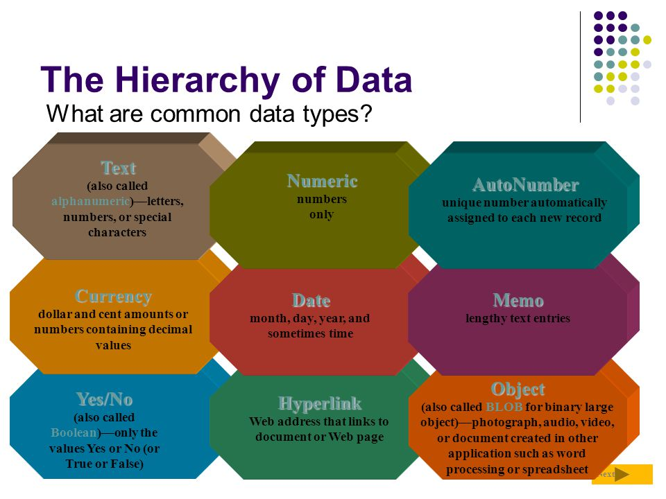 The Hierarchy of Data What are common data types Text Numeric