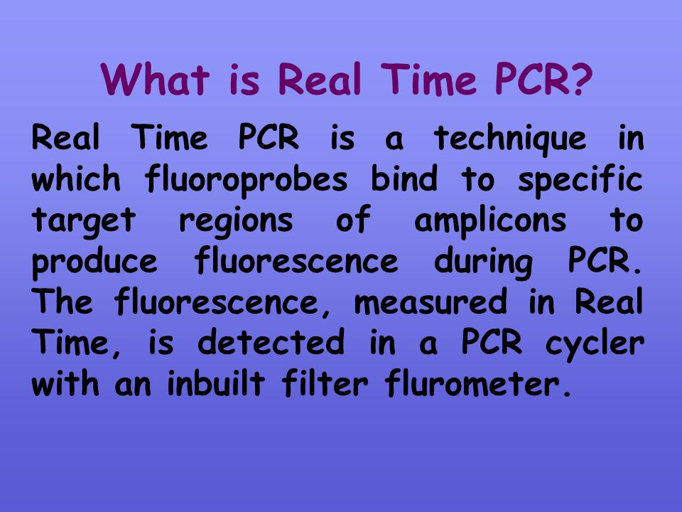 What is Real Time PCR