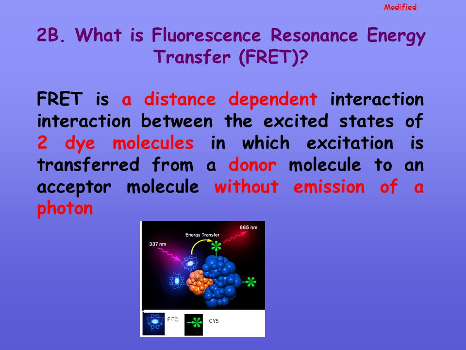 2B. What is Fluorescence Resonance Energy Transfer (FRET)