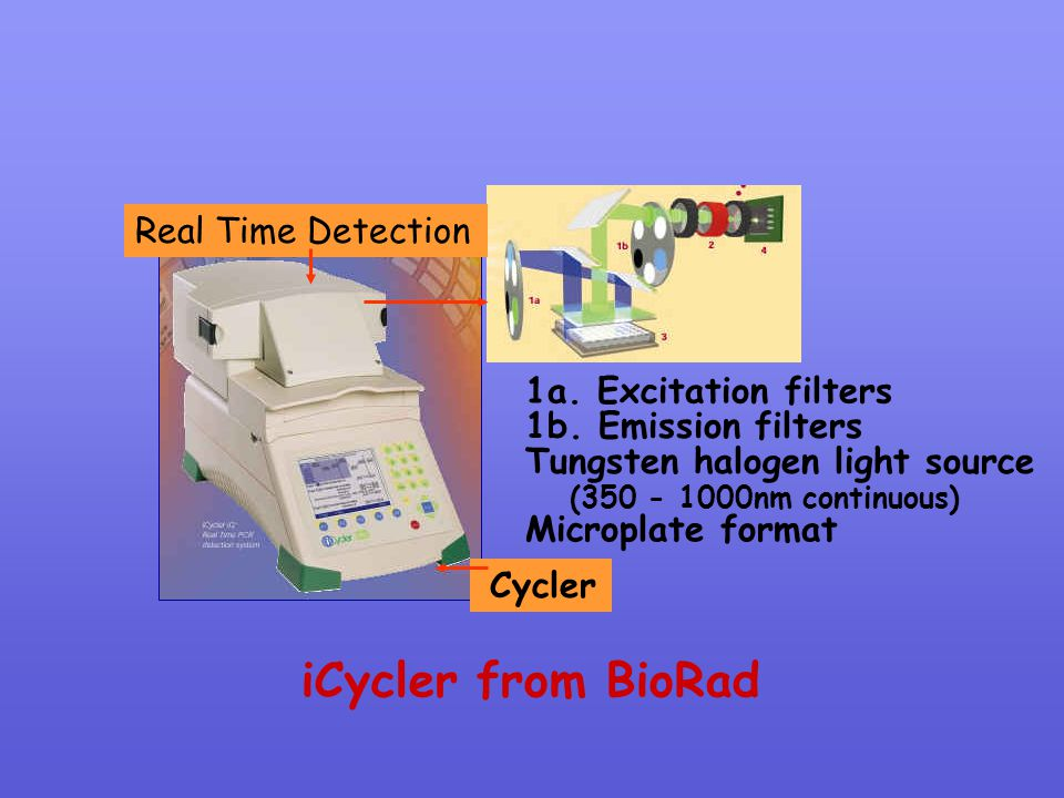 iCycler from BioRad Real Time Detection 1a. Excitation filters