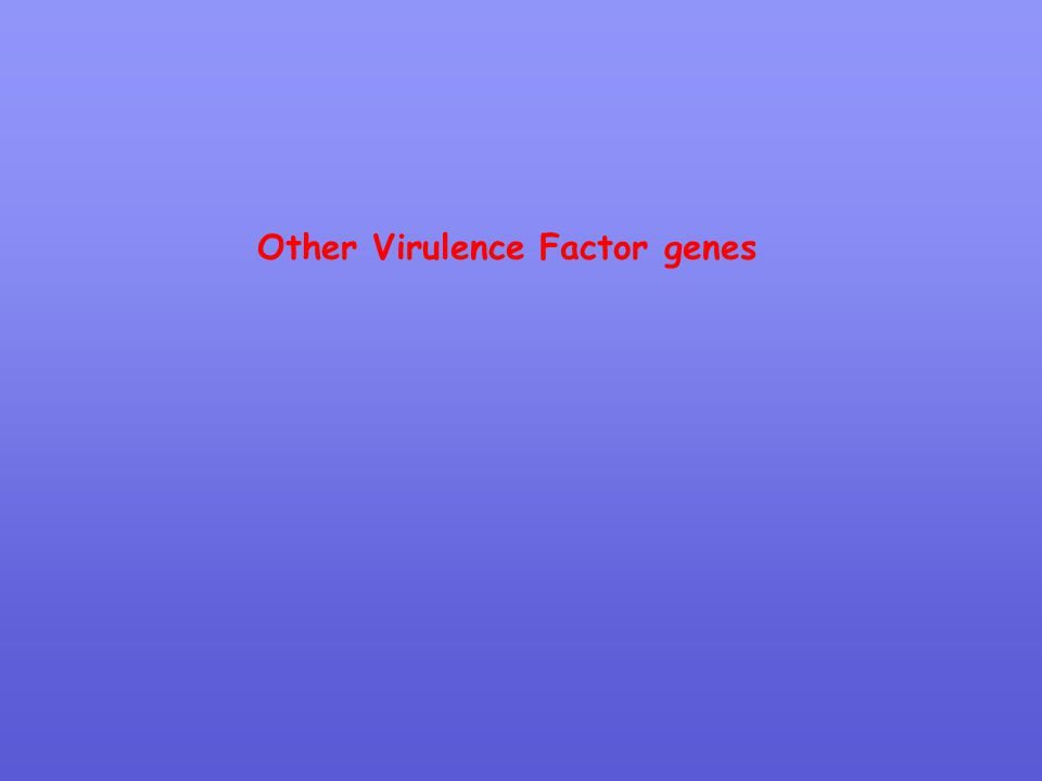 Other Virulence Factor genes