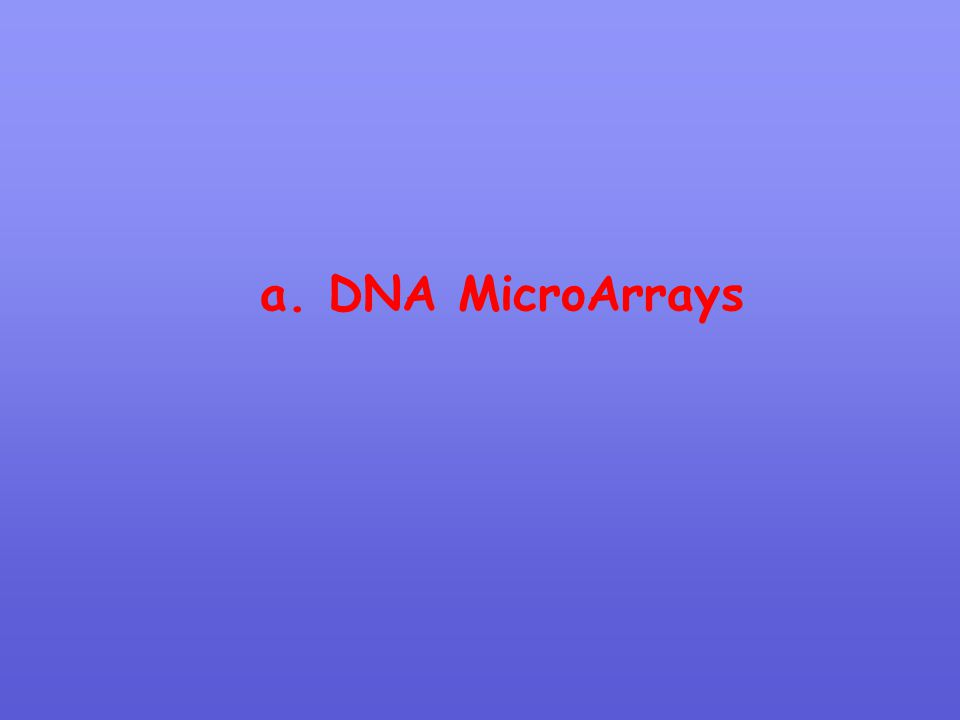 a. DNA MicroArrays