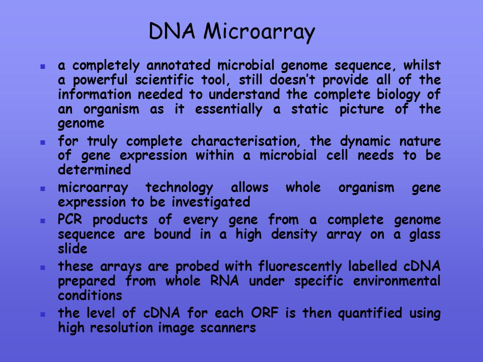 DNA Microarray