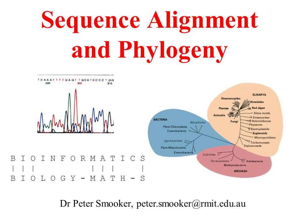 Sequence Alignment and Phylogeny
