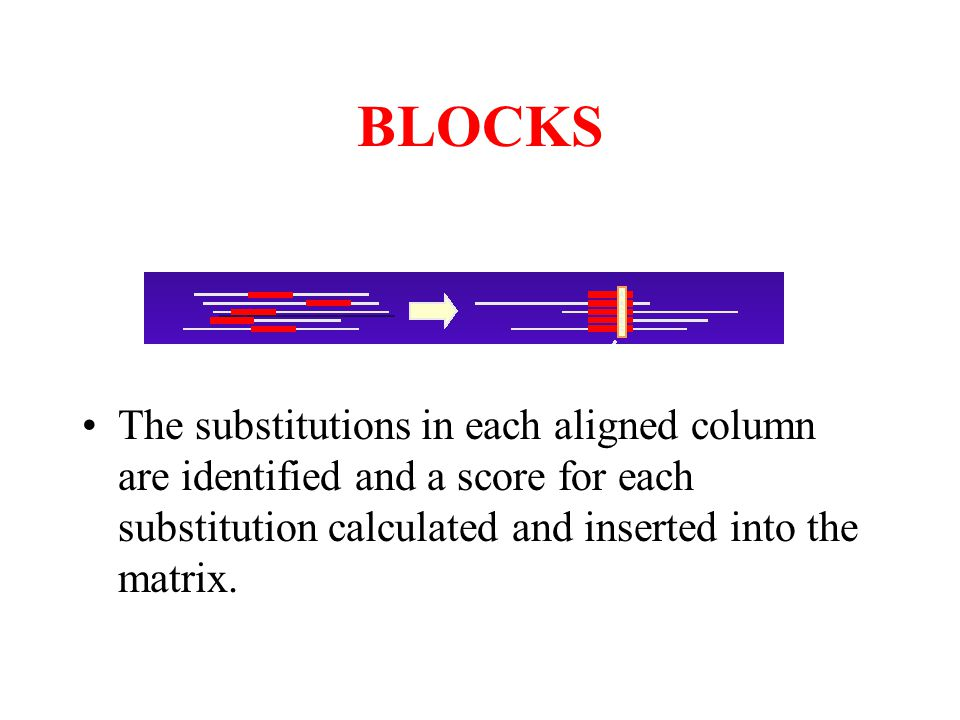 BLOCKS The substitutions in each aligned column are identified and a score for each substitution calculated and inserted into the matrix.