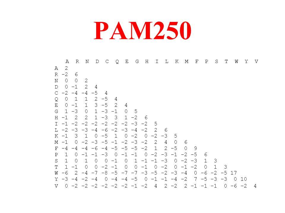 PAM250 A R N D C Q E G H I L K M F P S T W Y V A 2 R -2 6 N 0 0 2