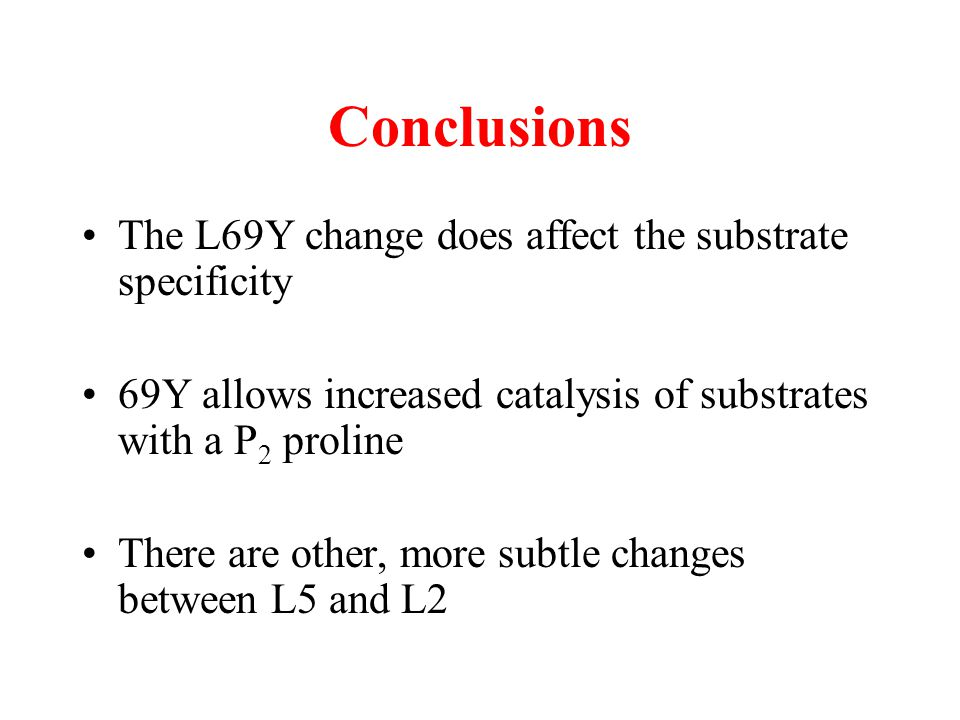 Conclusions The L69Y change does affect the substrate specificity
