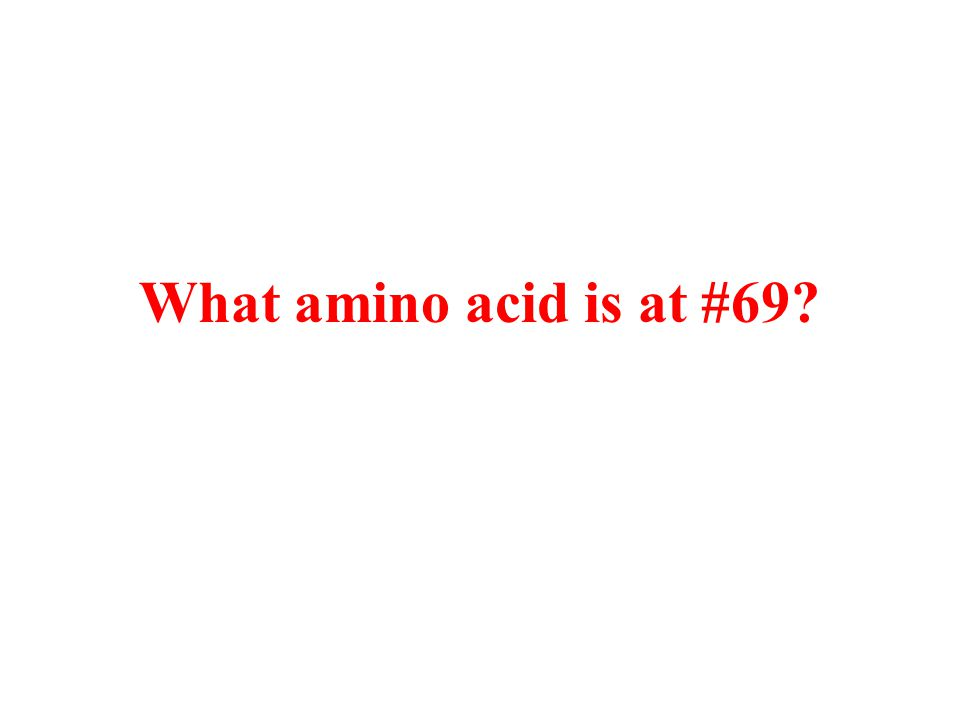 What amino acid is at #69