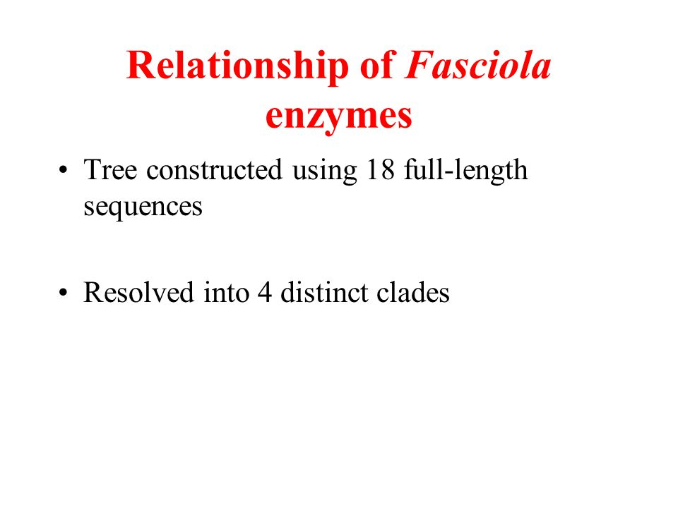 Relationship of Fasciola enzymes