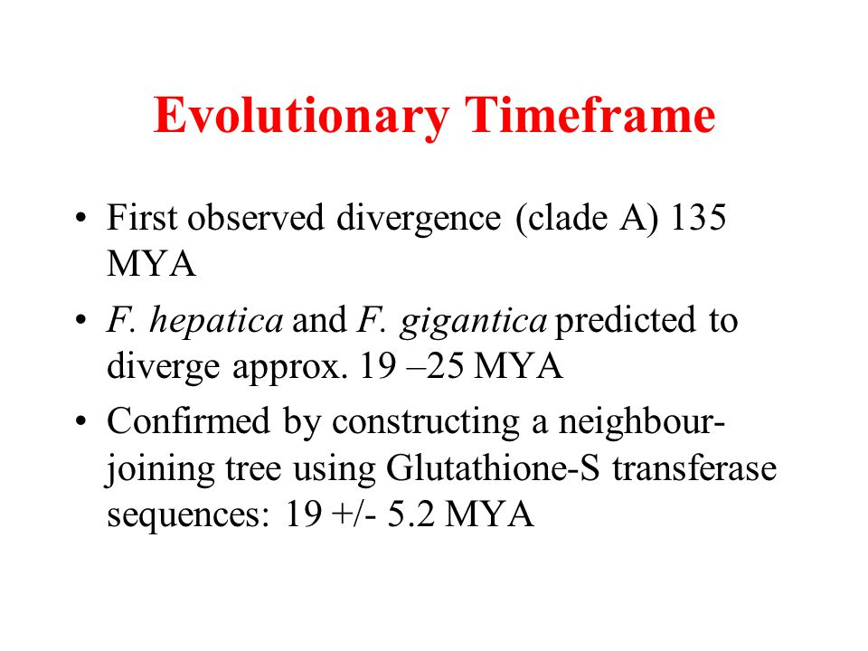 Evolutionary Timeframe