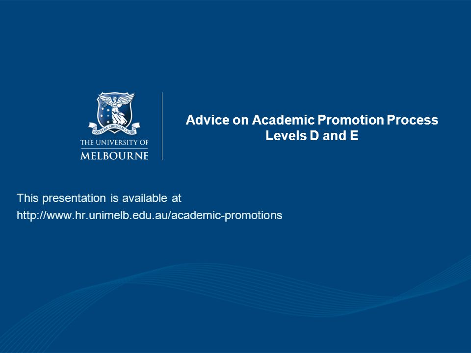 Advice on Academic Promotion Process Levels D and E