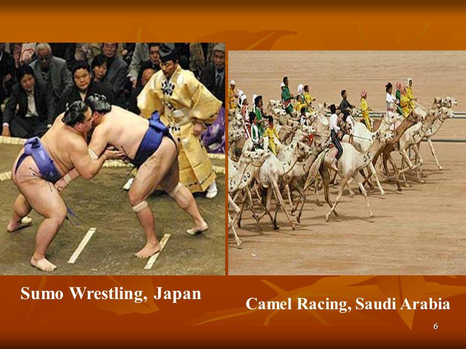 Sumo Wrestling, Japan Camel Racing, Saudi Arabia