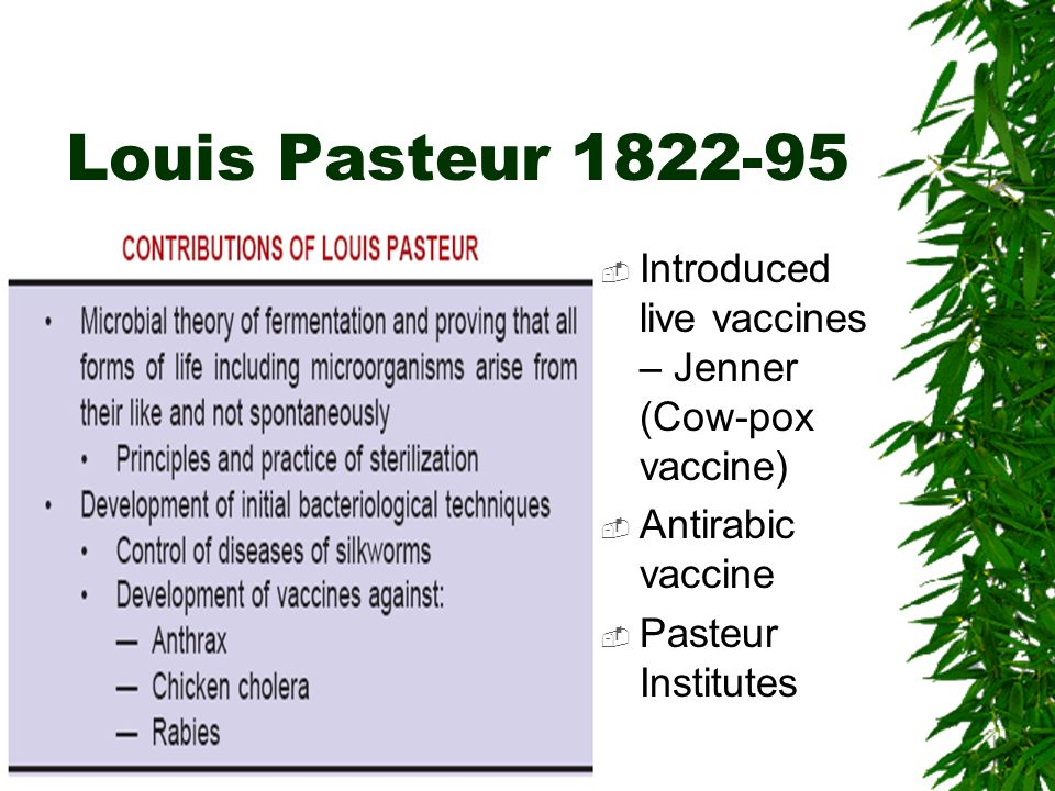 Louis Pasteur 1822-95 Introduced live vaccines – Jenner (Cow-pox vaccine) Antirabic vaccine.