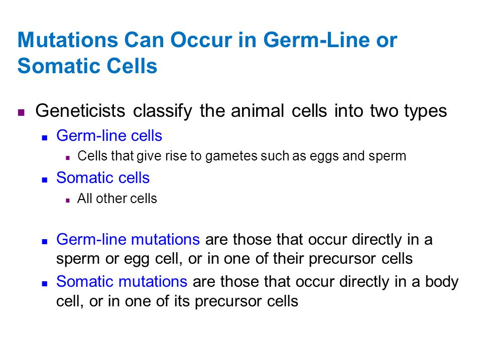 Mutations Can Occur in Germ-Line or Somatic Cells