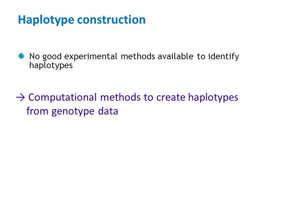 Haplotype construction