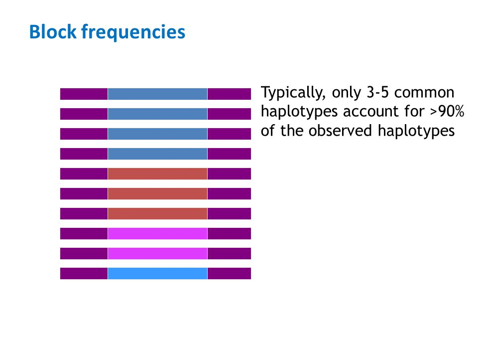Block frequencies Typically, only 3-5 common haplotypes account for >90% of the observed haplotypes