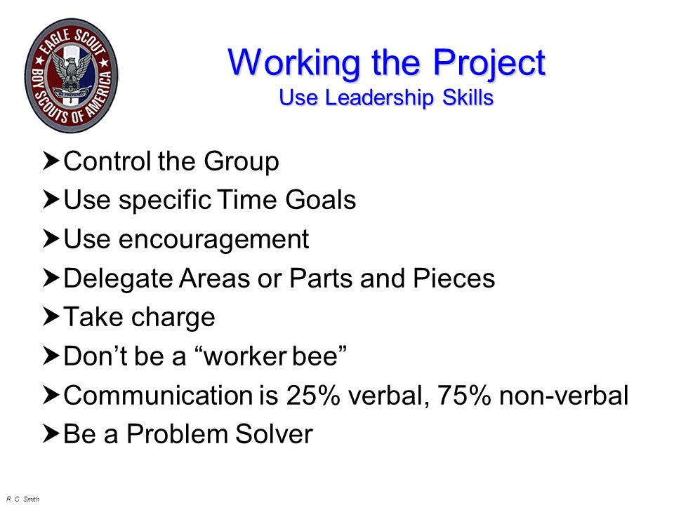Working the Project Use Leadership Skills