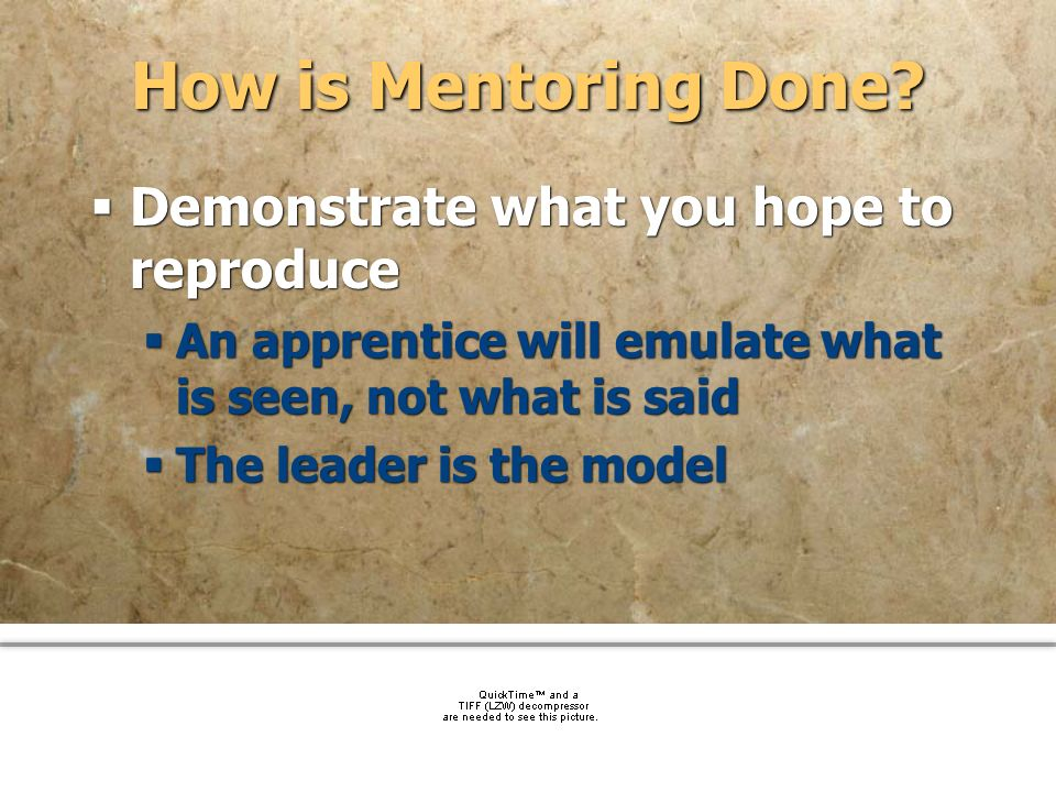 How is Mentoring Done Demonstrate what you hope to reproduce