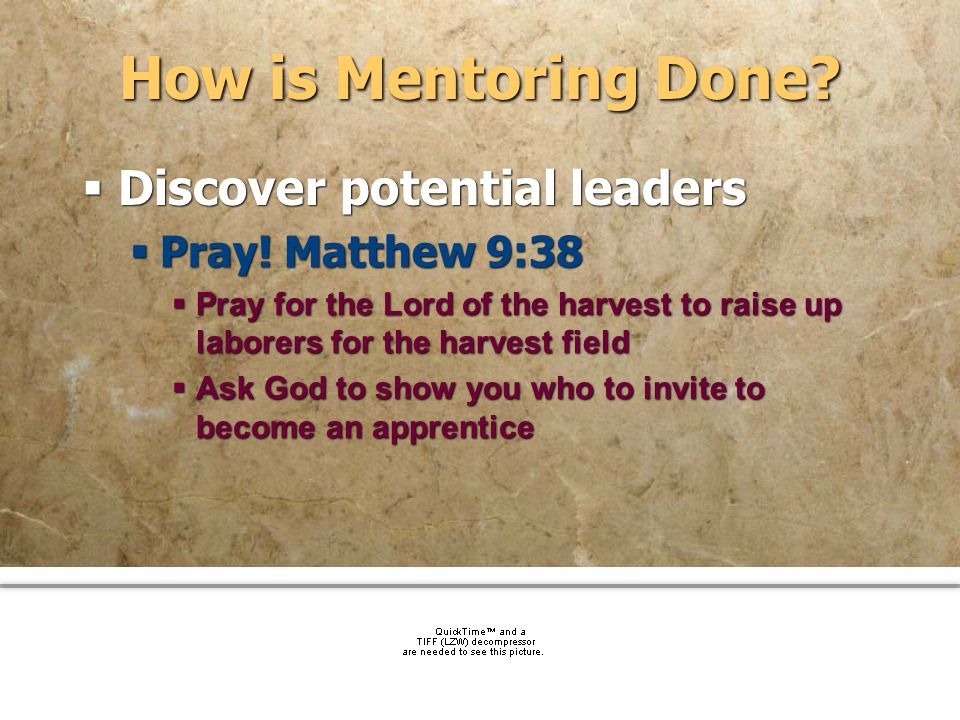 How is Mentoring Done Discover potential leaders Pray! Matthew 9:38